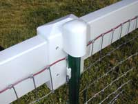 Horse fencing - Equi-Tee is safer pasture fencing